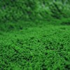 Artificial Display Grass Close